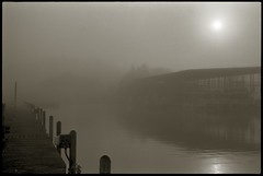 Two Rivers (efo) Tags: morning bw fog louisiana missouri saltriver mississipiriver om4