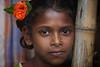 Young orphan, Orissa, India