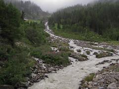 Winnebach bei Gries - Juli11, NGID846436958 (naturgucker.de) Tags: tirol sterreich naturguckerde cjrgchmill ngid846436958 sulztalalmambergerhtte