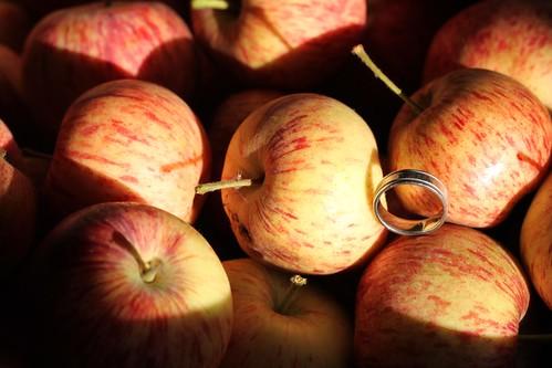 176/365 08/23/2011 Ring