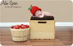 Hannah (1) (~Adia Speer Photography ~) Tags: wood baby apple girl hat wall stem basket newborn crate woodenfloor baseboard brownblanket