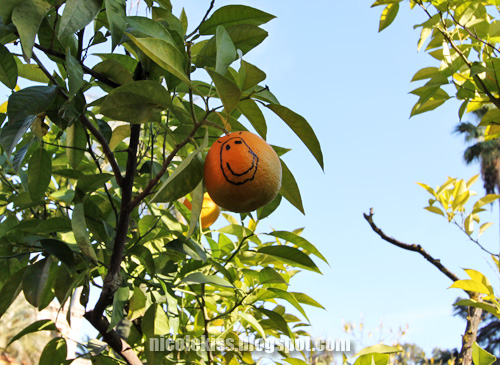 smiley orange