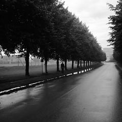 P8259424.tif (Sigfrid Lundberg) Tags: street people man lund reflection wet rain sweden streetphotography sverige kg reflexion regn vm wetpavement heliar15mmf45 spegling blt bltt voigtlanderheliar15mmf45 klostergrden vstanvg