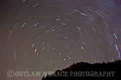 Forest Falls stars