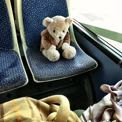 I told #Bear to be quit and a nice little Bear. Running around in a driving bus is dangerous !
