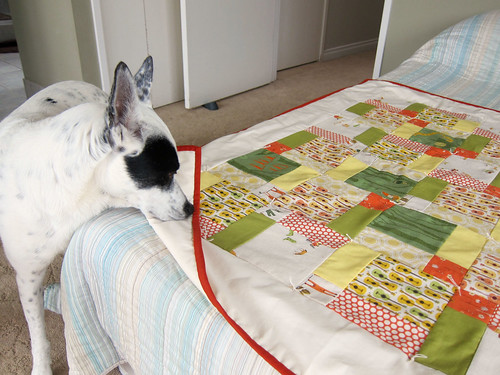 My first quilt_11