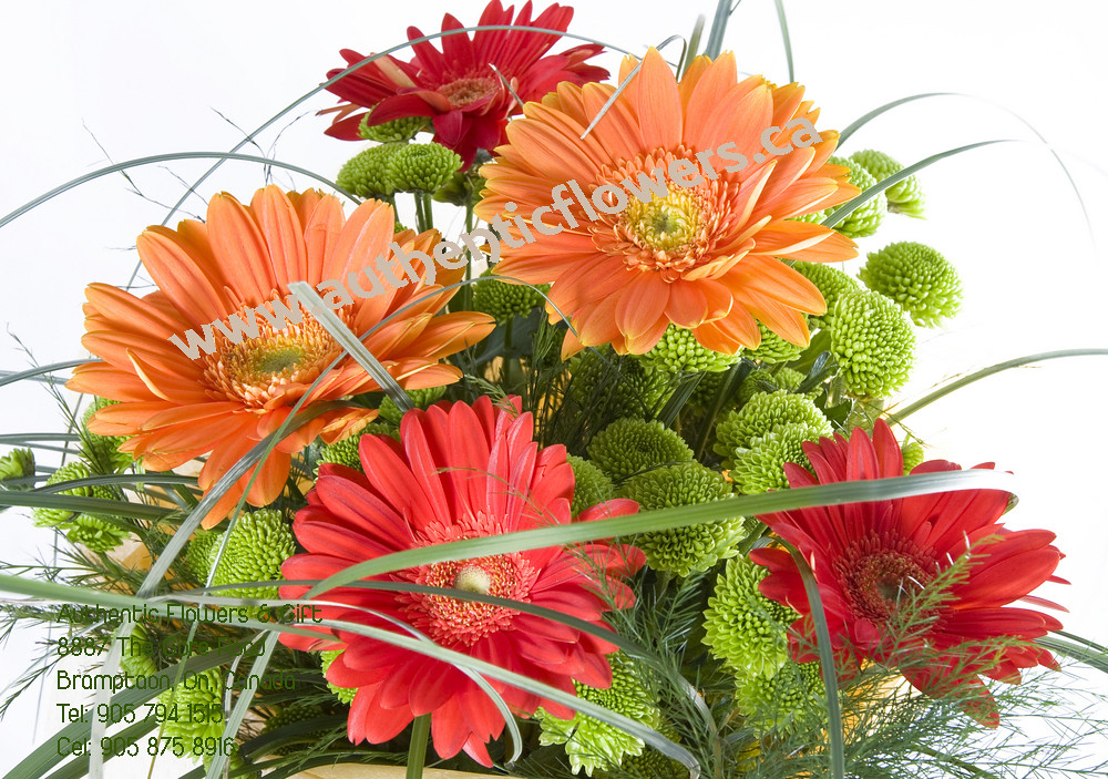 Authentic Flowers.ca