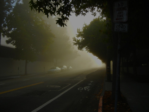 Morning Fog 4733 500