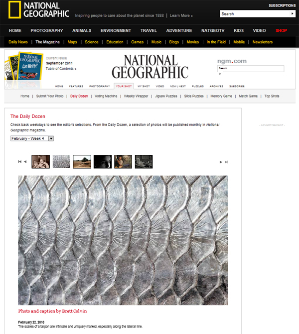 Nat Geo Daily Dozen Feb 22, 2010