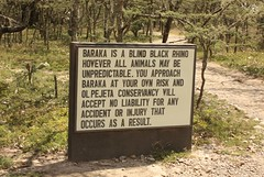 Baraka Information Sign (Sum_of_Marc) Tags: africa ol kenya centre rhino information kenia sanctuary afrique conservancy morani pejeta  olpejeta  republicofkenya  moraniinformationcentre