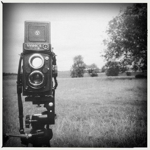 yashica by mdx