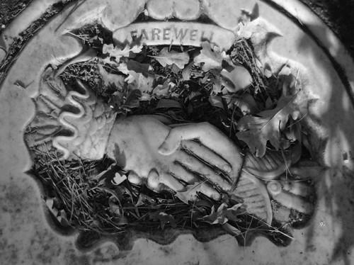 Alamo Cemetery 04 bw