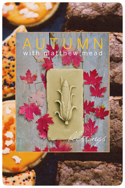 Cover-Autumn-with-Matthew-Mead