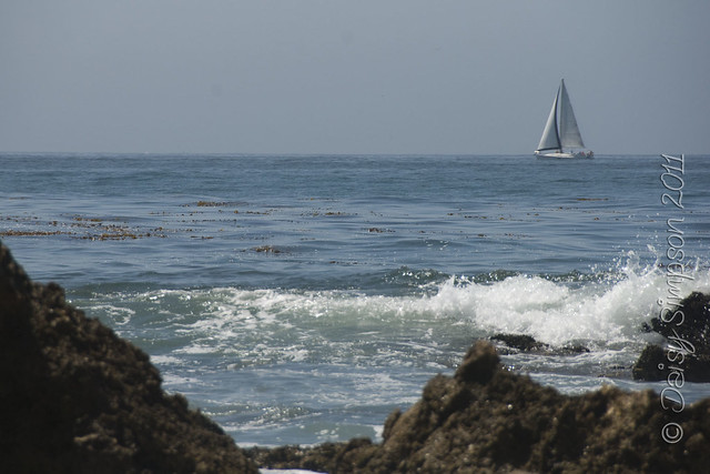 D4 tide pools sail boat