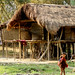 Traditional Mishing stilted house (Bret Charman)