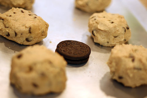 Look how tiny that Oreo in the sea of giant cookies.