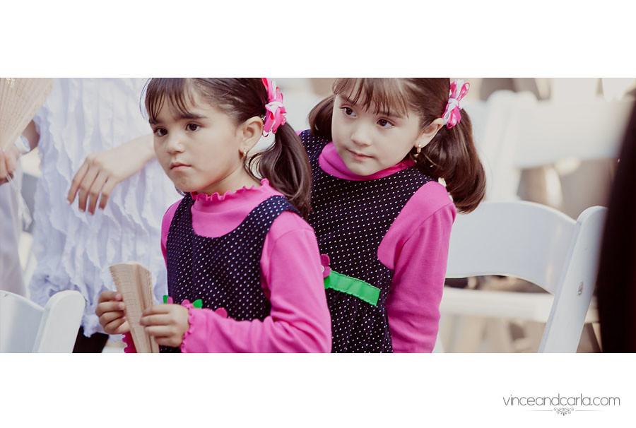 cer twins