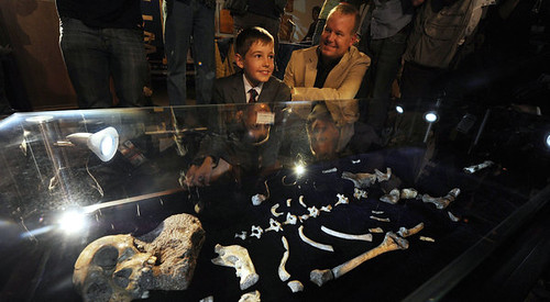 A South African fossil has been discovered that may redraw the ancestry of humanity on the African continent. The youth shown in the photo is from South Africa and reportedly saw the fossil. by Pan-African News Wire File Photos