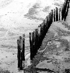 Low tide (DeniseJC) Tags: bw france seaweed beach sand brittany lowtide posts stmalo