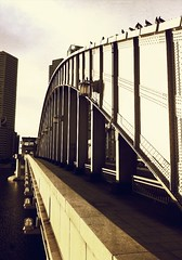 朝日を浴びる鉄橋 #inpoke #bridge