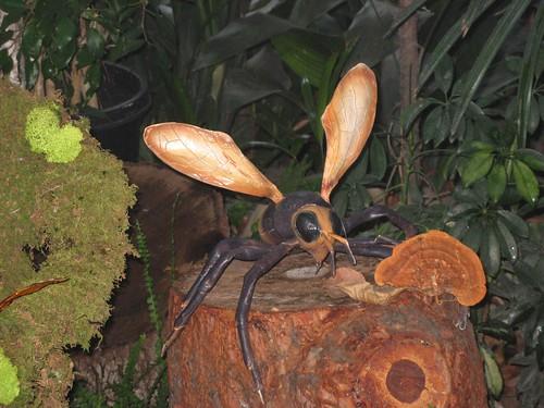 Natural wasp