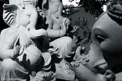 Still (Stuti ~) Tags: sculpture india white elephant festival god ganesh mumbai hindu chaturthi ganpati