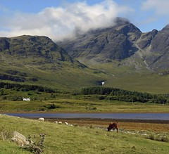 SKYE(August) (kenny barker) Tags: uk summer house mountain colour skye water clouds island scotland august panasonic g1 cuillins shining thistles tqm simplysuperb summeruk daarklands crazygeniuses