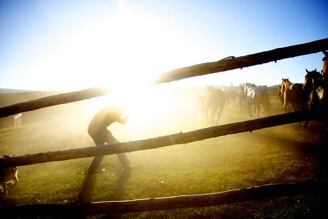 Black Mountain Colorado Dude Ranch fence man photographer dust magic horses