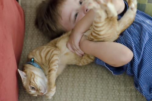 卢卡斯爱猫咪