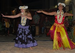 Authentic Hawaiian Hula Dancing by Leilani (StFrancis2) Tags: cats wow luau bow meow 2011