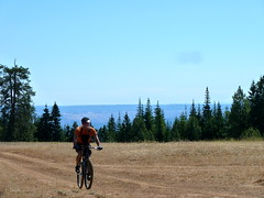Two Lookouts Ride (Doug Goodenough) Tags: summer mountain bike bicycle oregon scott fire ride doug troy august 11 sean cycle aug gravel lookouts goodenough 2011 douggoodenough drg53111p drg53111plookouts