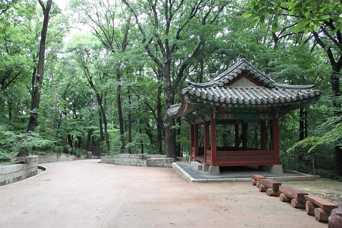 On the way to last stop of Ongnyucheon at Secret Garden of Changdeokgung PAlace, Seoul South Korea