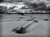 Dunes at Yaquina Bay (Michael Pancier Photography) Tags: usa oregon newport pacificnorthwest oregoncoast commercialphotography naturephotographer centraloregoncoast landscapephotographer fineartphotographer iphonephotography michaelapancier wwwmichaelpancierphotographycom