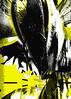 Золотая пчела 8. Каталог биеннале. Автор-составитель Сергей Серов. Дизайнер Анна Наумова