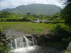 Rajur near Bhandardara (probing) Tags: pune bhandardara