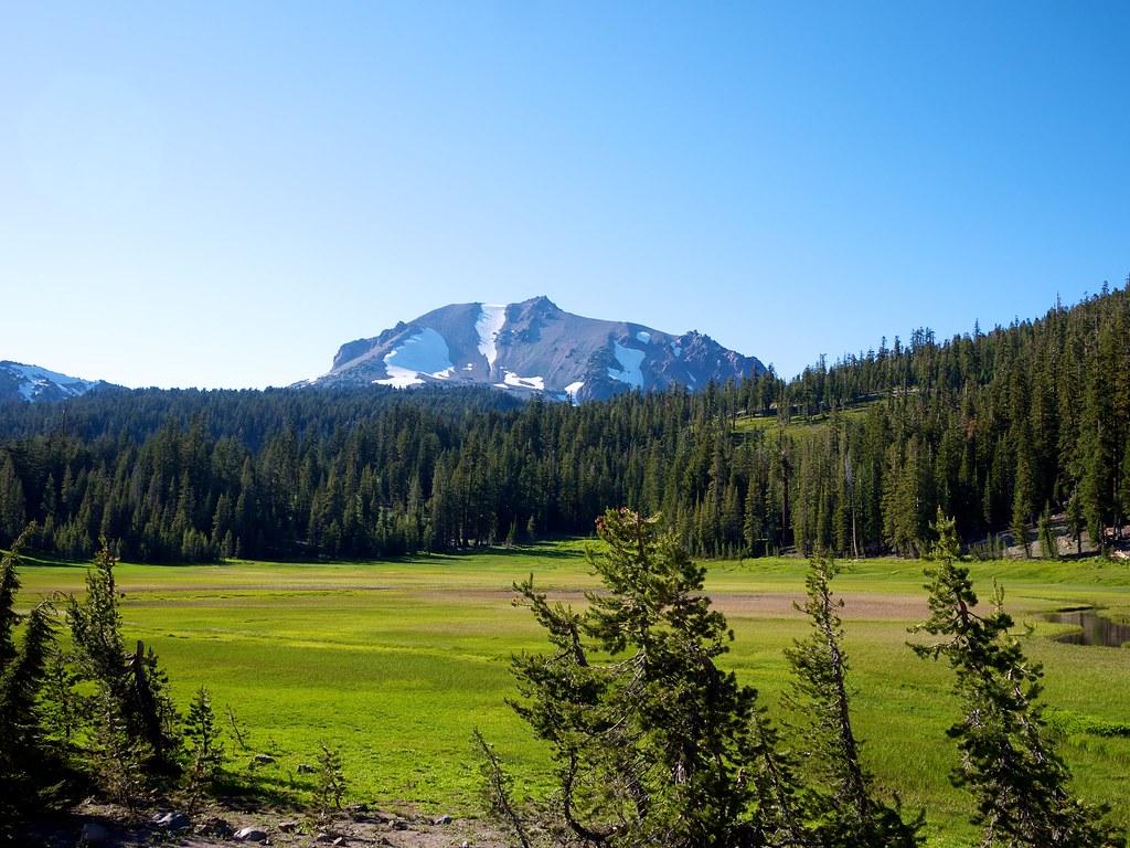 Meadow in Lassen Volcanic National Park