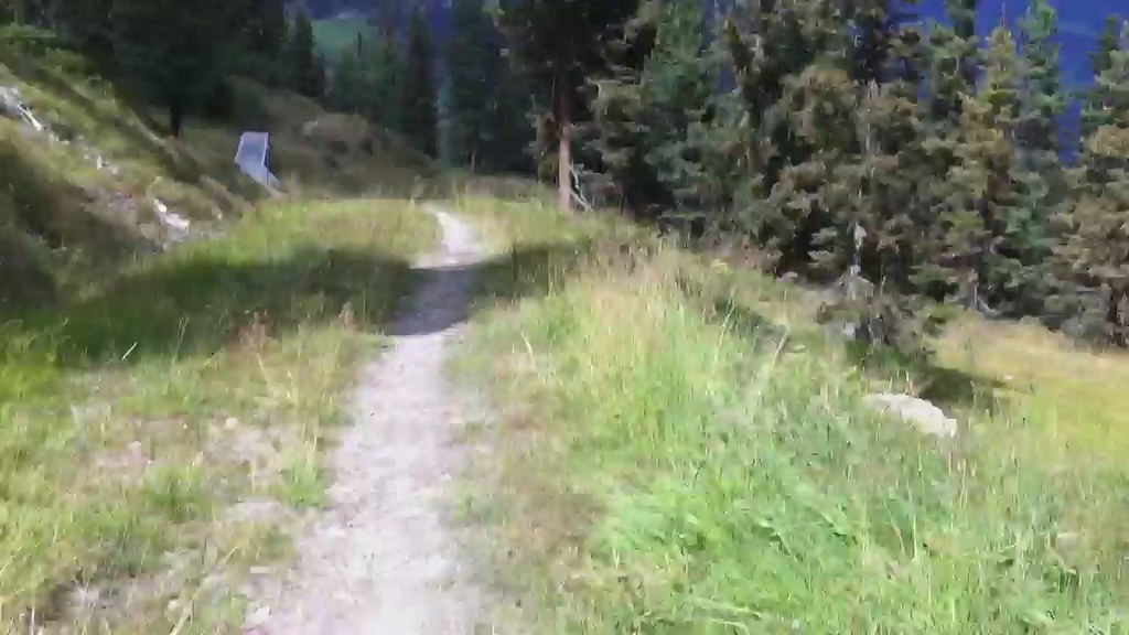 Mountain Biking Penkenbahn Freeriding Downhill In Mayrhofen, Tirol, Austria