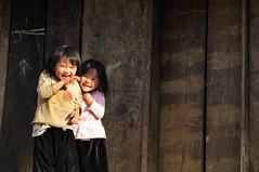 83_LAO38920106 (TC Yuen) Tags: vietnam sapa hmong terracefarming locai