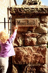 Moss Bank (Mr Moss) Tags: moss lakes lakedistrict indie mossbank