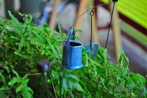 Tin watering pot