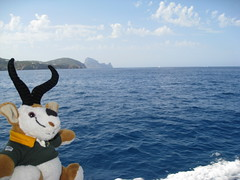 2011 aug 30 img_6625 (Dave Reinhardt) Tags: summer holiday spain ibiza teddybok