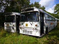 Keenan, Coalhall Leyland Leopard Alexander BSJ 931T (miledorcha) Tags: bus abandoned buses coach leopard western alexander schoolbus ayr leyland keenan psv pcv withdrawn ayrshire westernsmt ytype drongan coalhall psu3e4r bsj931t wsmt