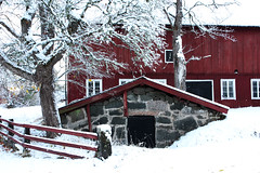winter wonderland (mormorsstovlar) Tags: winter redhouse
