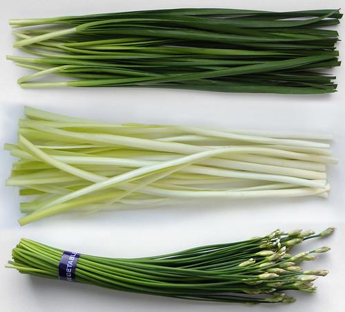 Drie soorten Garlic Chives of Chinese bieslook