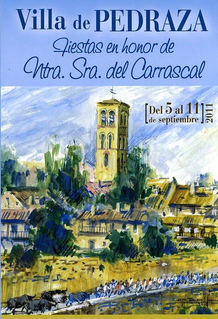 Libro 2011