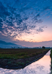 Paddy Field (Fadheez Ghazali) Tags: field sunrise nikon long slow paddy sigma shutter kedah refleks merbok 18250mm d7000