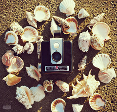 The Four Seasons : Summer (Libertad Leal) Tags: camera summer shells beach seashells vintage sand kodak fourseasons vintagecamera browniehawkeye vivaldi