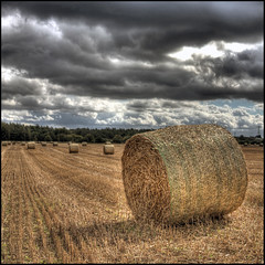 just another bale ... (John FotoHouse) Tags: uk sky colour nature clouds canon square eos europe flickr yorkshire leeds hdr haybale johndolan westyorkshire whiterose dolan 2011 40d leedsflickrgroup leedsflickr hometourism johnfotohouse yorkshirephotographer copyrightjdolan