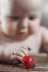 La Dcouverte (Sous l'Oeil de Sylvie) Tags: boy portrait baby 50mm pentax main exploration flix bb fraise alimentation visage 7months garon dcouverte grosplan stawberry k7 7mois chaisehaute dsaturation sousloeildesylvie