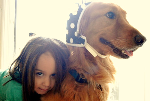 Maxwell - Golden Retriever - with Madeline